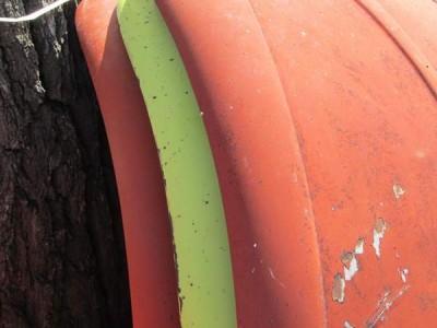 parts: Volkswagen front hood fort collins